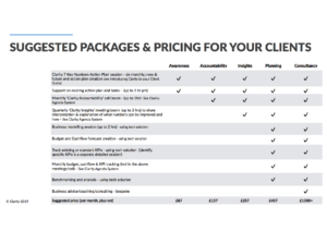 Clarity's suggested packages and pricing for delivery of advisory services