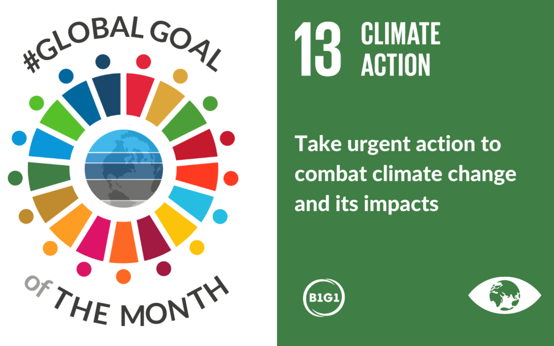 Climate Action – Jan 2021 #GlobalGoaloftheMonth