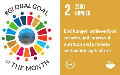 #GlobalGoaloftheMonth – February 2021 – ZERO HUNGER